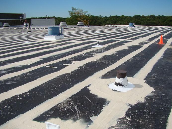 EPDM Roof