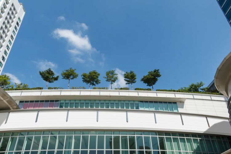 Green Roofing Systems on Top of Commercial Building