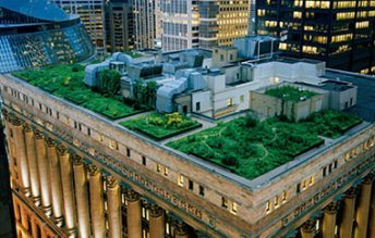 A Large Intensive Green Roof on a Skyscraper
