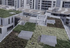Rooftop View With Vegetation