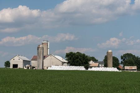Rural Agricultural Building